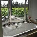 tub overlooking vineyard