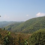 Doi Tung - Views