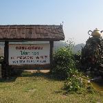 Mae Salong - 101 Tea Plantation