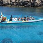 Raptor Excursion Protaras Cyprus
