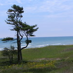 Lake Michigan, on one of the nature trails