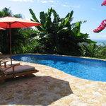 Foto de Hotel Casa Chameleon