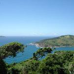 Del mirador Playa de Joao Fernandez