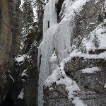 The Maligne Canyon