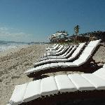 Beautiful beach and lounge chairs
