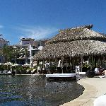 Pool and palapa bar