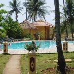 Pool Carina