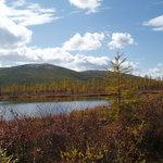 Siberian landscape