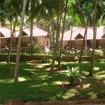 Thapovan Hotel