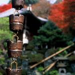 Japanese take on a rain gutter
