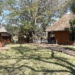 Gomo Gomo Game Lodge Foto