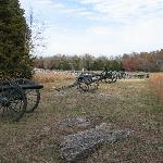 Stones River Battlefield from one of the tour stops