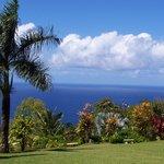 Maui Garden Of Eden - Botanical Gardens & Arboretum