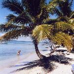 Isola Saona 2