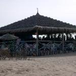 the beach bar hut