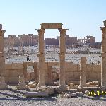 View over Palmyra (temple in background)