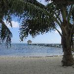 Pelican Reef Pier