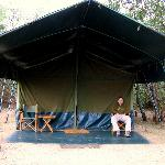 Our tent at Porini