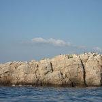 Ilhas de Martinhal