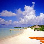 Full Moon Beach Resort April 97