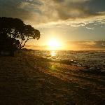 Four Seasons Hualalai: The Beach Tree at sunset