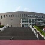 Fukuoka Dome (Baseball stadium)