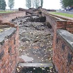 Steps to the gas chamber - Birkenau