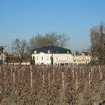 Hotel - over the Margaux vineyard