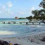 Coco Plum Coast