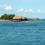 Nextdoor Island