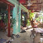 Shanti Lodge Le trottoir et entrée du restaurant