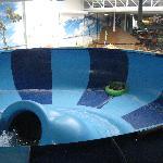 Family Bowl Slide