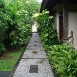 walk path to the villas