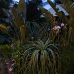 This is the garden area at dusk.  All of the grounds are beautifully landscaped.