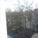 View out of kitchen window