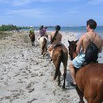 beach ride back to stables