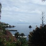 Looking towards Funchal from garden by pool