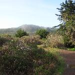 Hiking Trail from Hostel to Beach