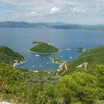 Island Mljet,Dubrovnik
