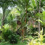 Villa 7 hidden