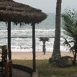 Foto di Coconut Grove Beach Resort