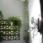 Upper paet of shower in Casa Luna
