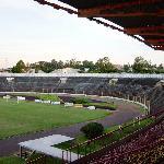 Olimpic Stadium