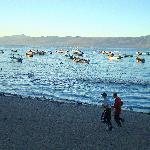 Joggers enjoying the beach at Lake Chapala