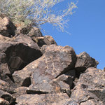 Have fun spotting the 1500 Petroglyphs