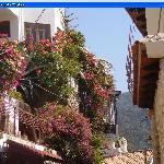 Une ruelle fleurie de Purto Vallarta