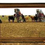Framed Cows at Cadillac Ranch