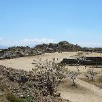 Day Trip to Monte Alban, take the collectivo, not a private car!