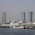 Tsukiji Fish Market and Tokyo Tower