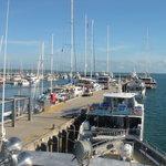 Port Douglas Queensland